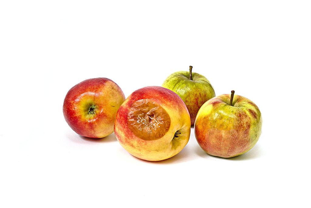 Heb jij een rotte appel voor de dorst
