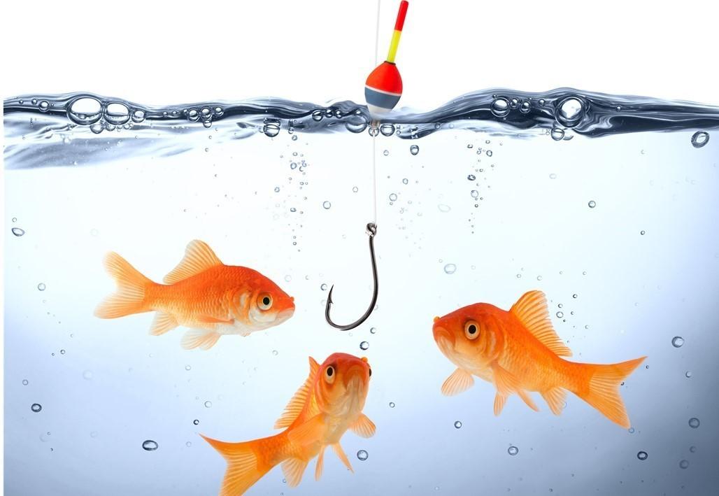 Selectie en kansberekening in de verkoop