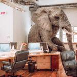 De<span> olifant </span>in de kamer